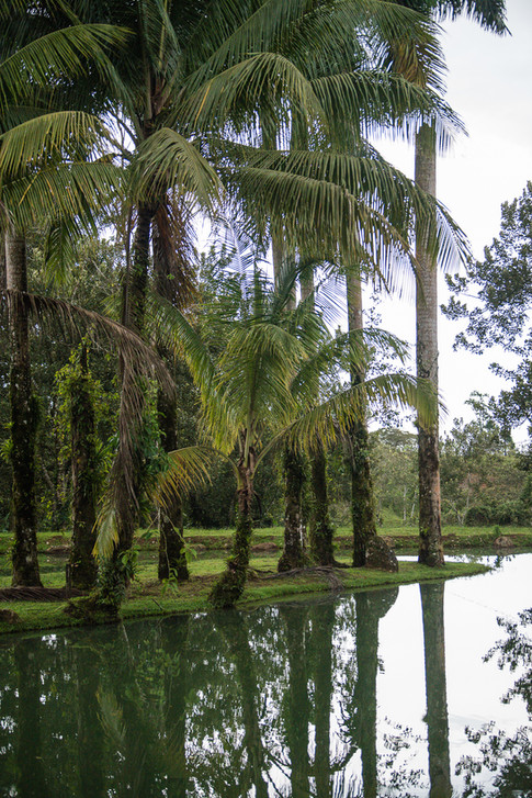 Costa Rica-17.jpg
