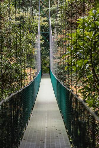 Costa Rica-14.jpg