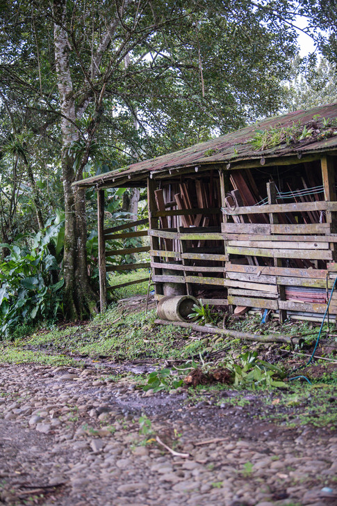 Costa Rica-19.jpg