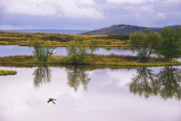201804-Iceland-32.jpg