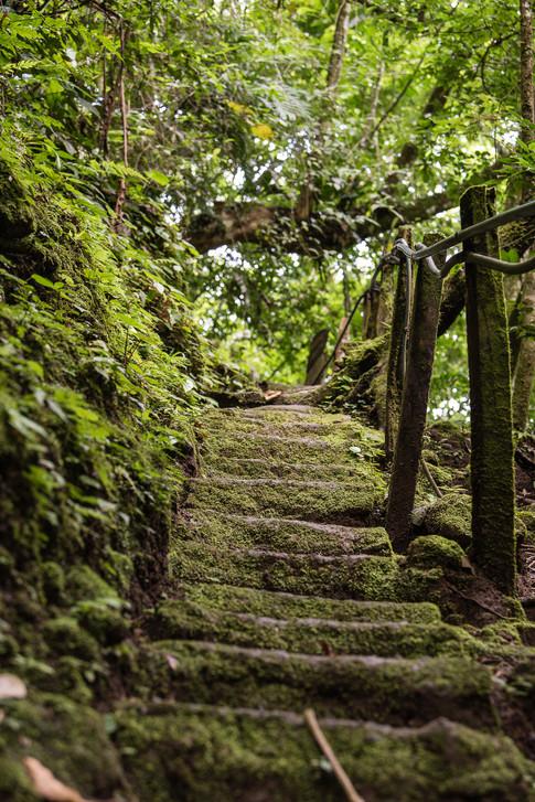 Costa Rica-16.jpg