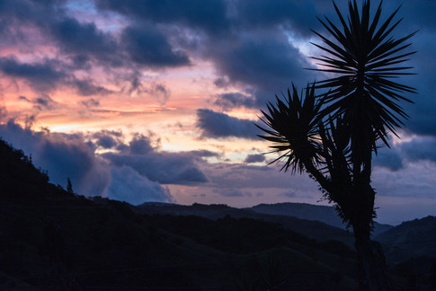 Costa Rica-5.jpg