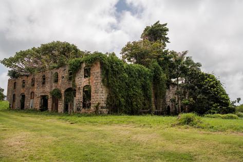 Barbados-10.jpg