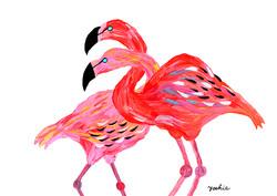 Flamingo-1-650px