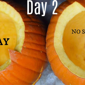 Preserve your carved pumpkins with this homemade spray. It's been pinned on Pinterest 10,000 times!