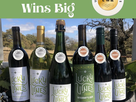 Lucky Vines Vineyard & Winery wins again; this time snagging silver in USA Wine Ratings Competition