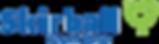 skirball-logo-color.png