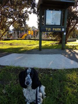 Tui Park