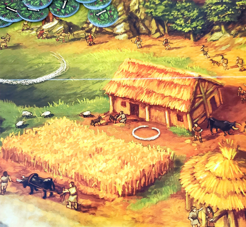The Field action space in Stone Age