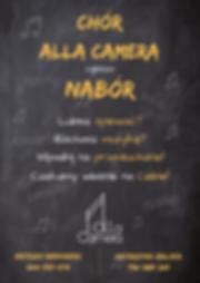 ALLA_CAMERA_—_gotowe.png