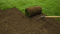 Did you know that Early and Mid-Fall are usually the best times of the yearTo lay new sod?