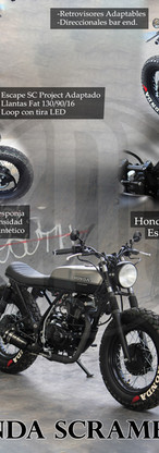Honda Z.jpg