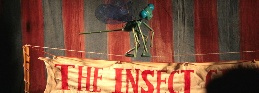 The Insect Circus by String Theatre