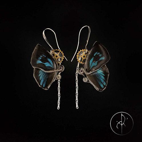 Boucles d'oreilles papillon noir et bleu