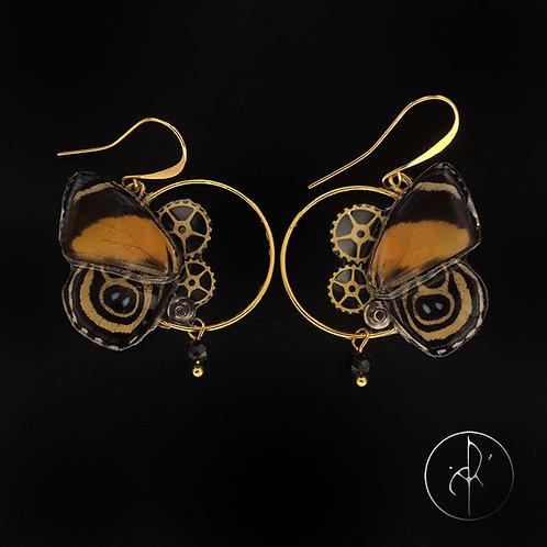 Boucles d'oreilles papillon véritable