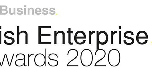Irish Enterprise Award Winner 2020