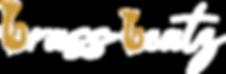 Logo_gestreckt_weiss.png