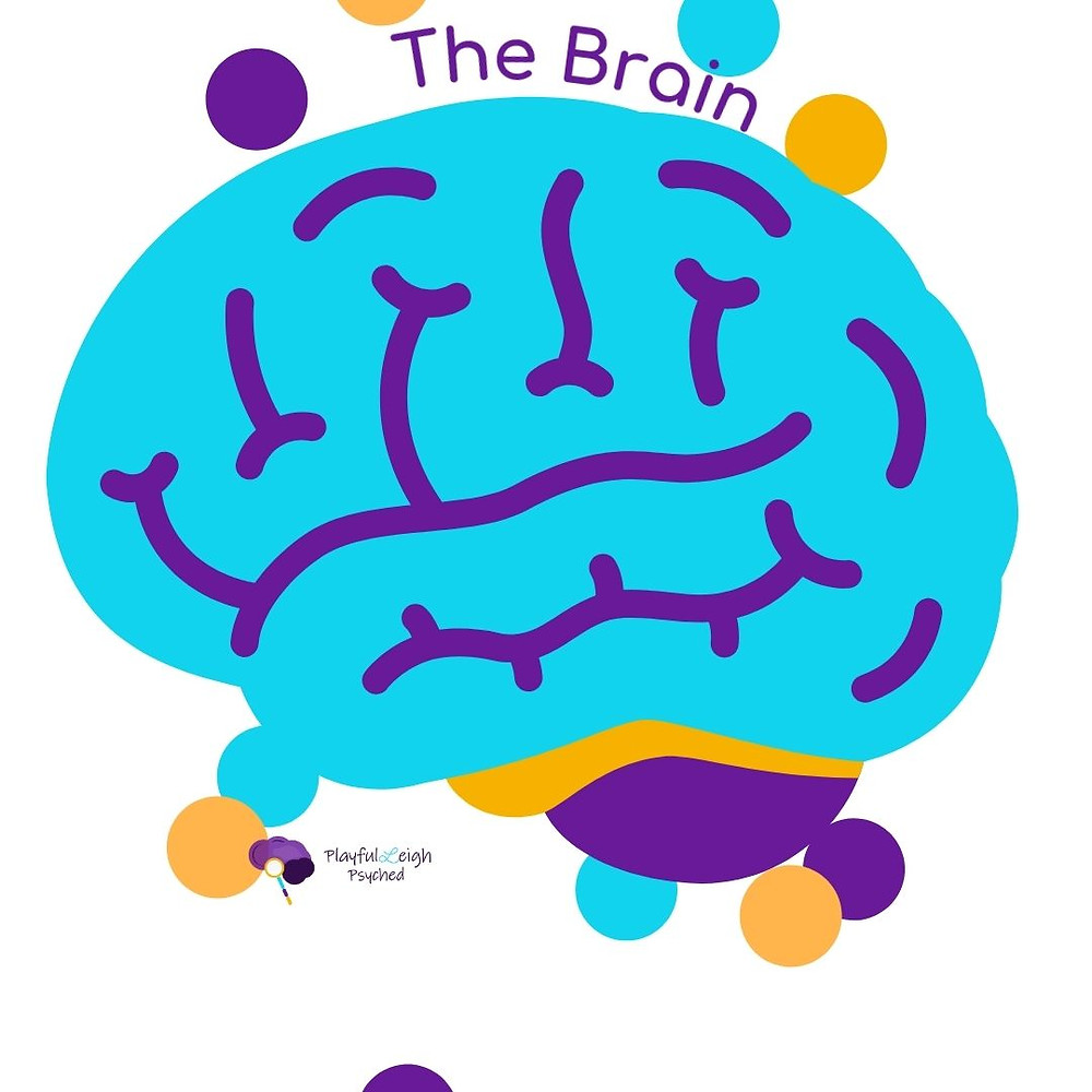 Vector of the Brain using PlayfulLeigh (playfully) Psyched brand theme colors, purple, gold, and aqua blue. Inludes company logo