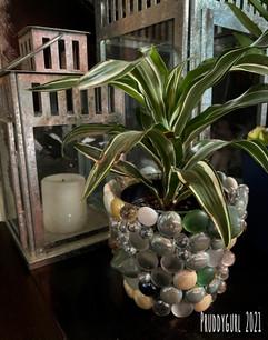 Green earthtone vase w plant WM.jpg