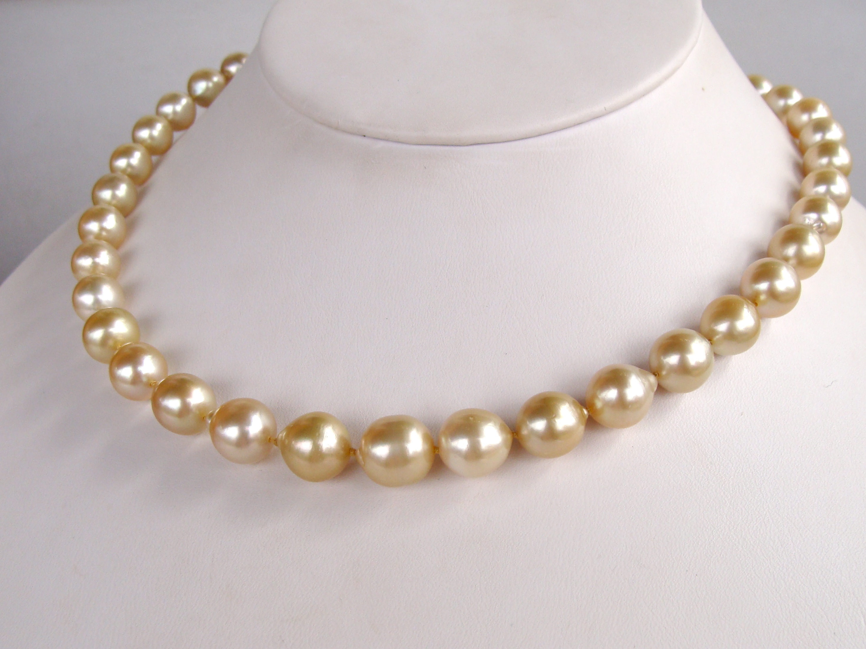 South Sea Gold Strand (BN250)