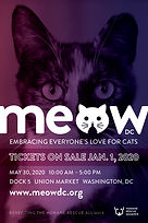 Meow_DC_2020_4X6_card.jpg