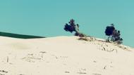 Dune Porto Pino 3.jpg