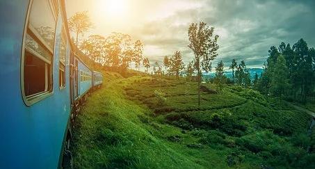 SRI LANKA Train.webp