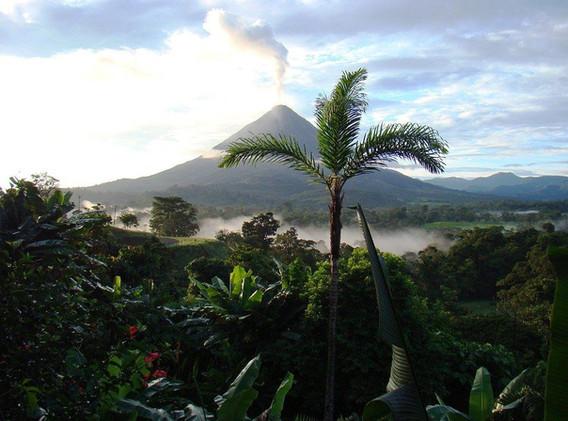COSTA RICA volcan jungle.jpg