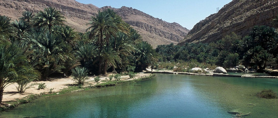 OMAN Wadi Bani Khalid.jpg