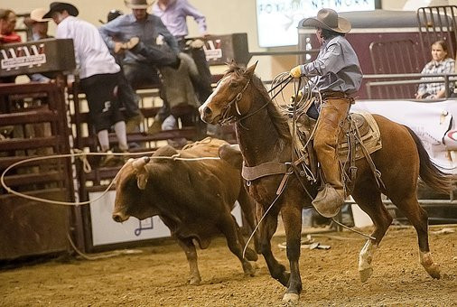 OUEST USA Rodeo.jpg