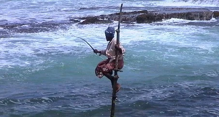 SRI LANKA pêcheur.webp