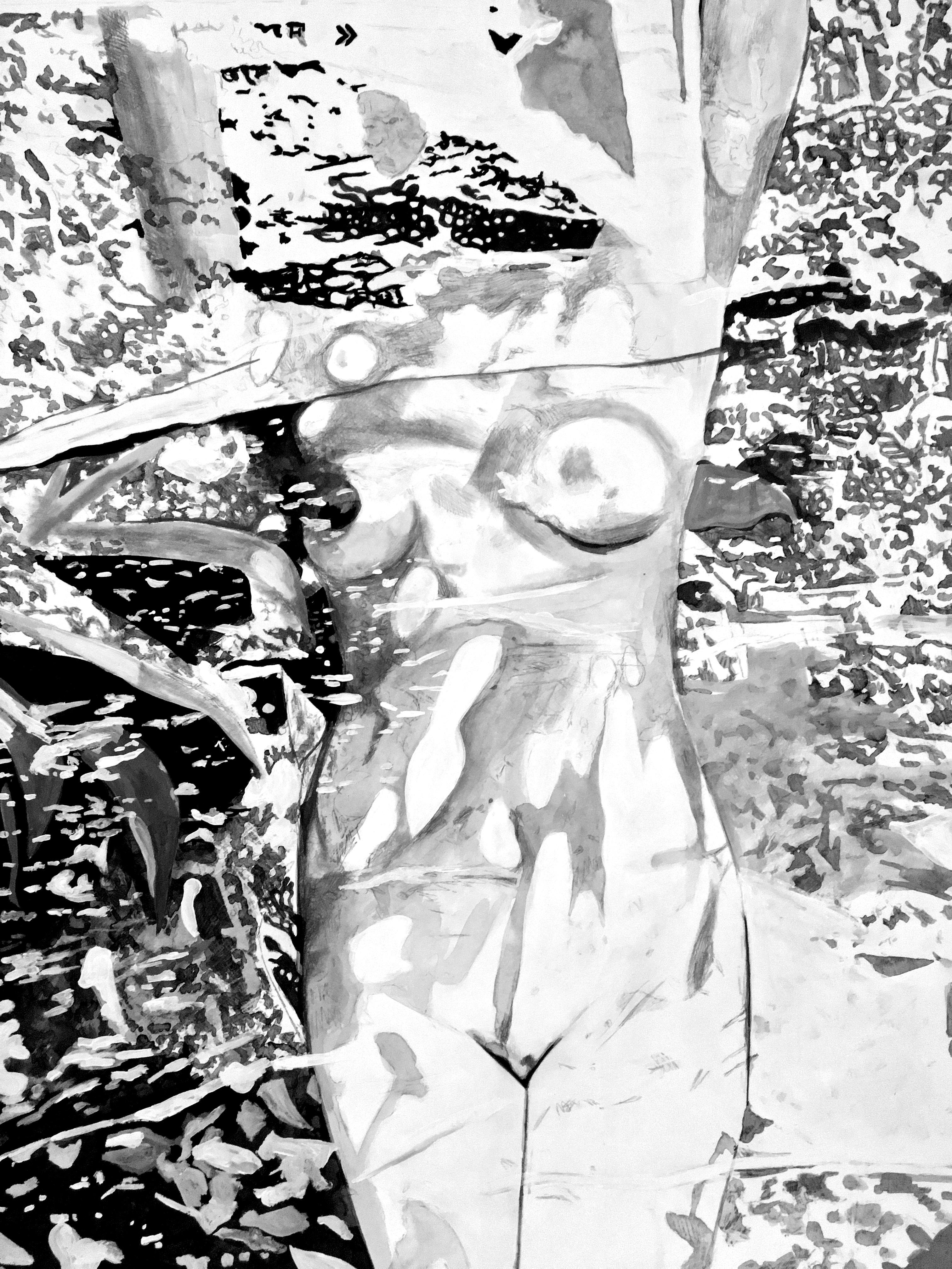 La Vénus délavée