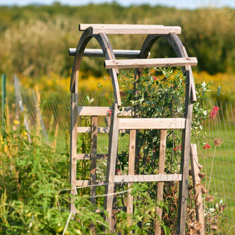Reed Homestead Vegetable Garden