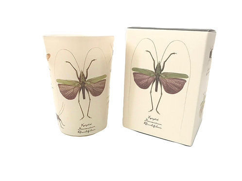 Vintage Drawings Insect Candle