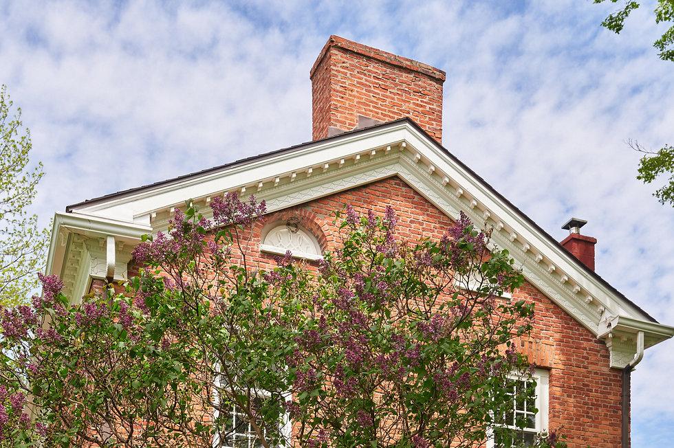 Lilacs at Reed Homestead