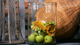 Nature and hurricane lamp from the shop