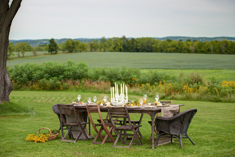 Reed Homestead, Finger Lakes, Countryside, guest rental