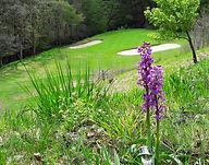 Parcours golf hotel laguiole