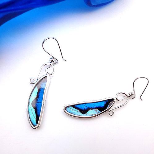 Butterfly Slice Earrings