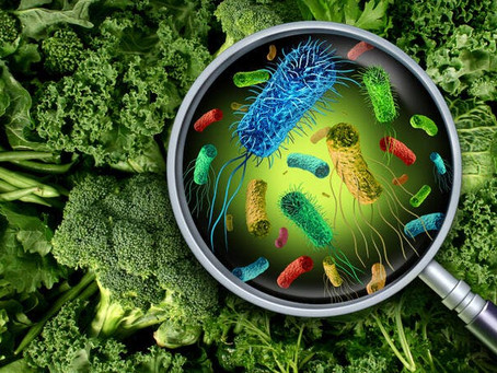 Startup of the Week: Uvera - Revolutionizing Food Safety, Putting an End to Food Waste