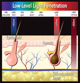 wavelength depth image.png