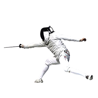 fencing05.png