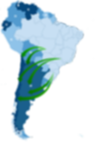 Transporte Rodoviário Mercosul