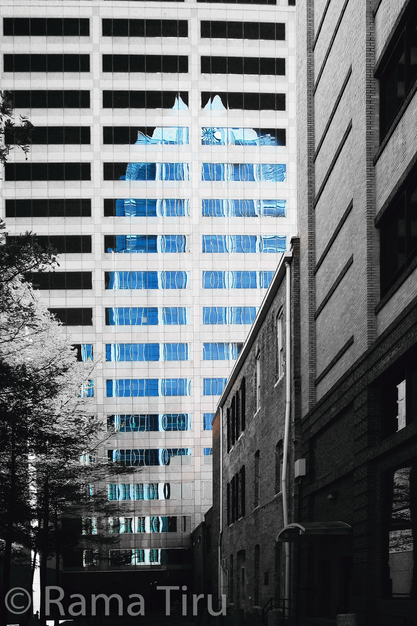 Frost Tower reflection, Austin Texasg
