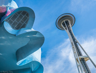Museum and Seattle Space Needle