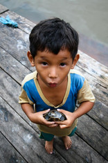 You want my tortoise?