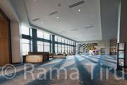 RamaTiru_Kalahari_HP-112.jpg
