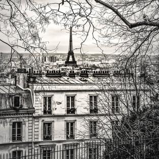 Parisview.jpg