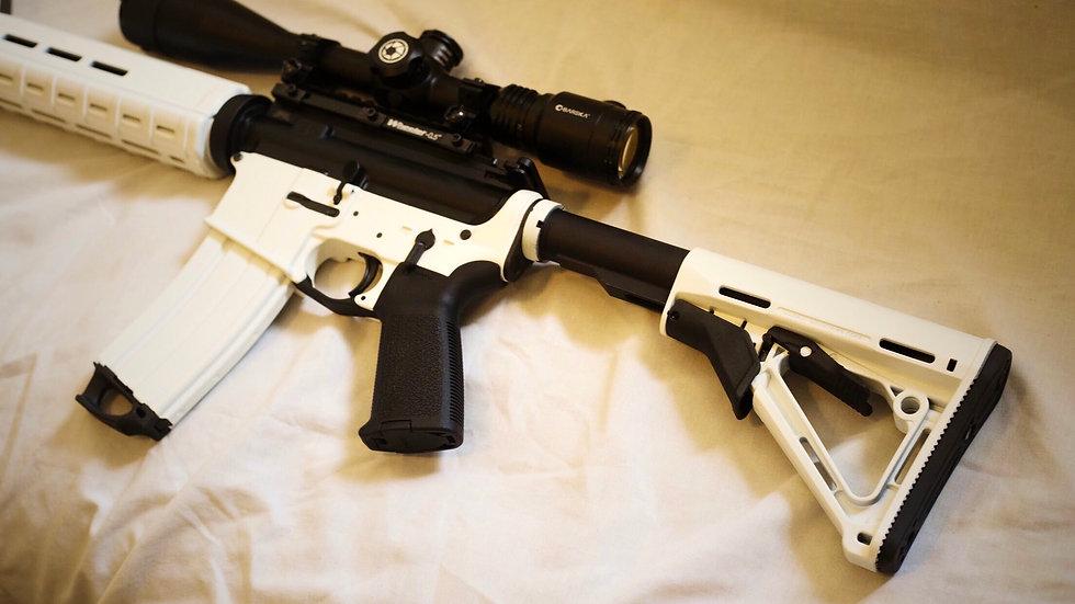 Firearm customization/ Builds