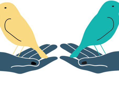 Feeding Two Birds with One Scone   #SexEdForAll Series
